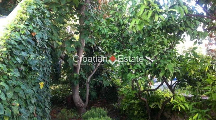 APARTMENT-for-sale-strozanac005