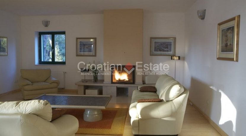 villa with big plot tennis pool privacy brac croatia (18)